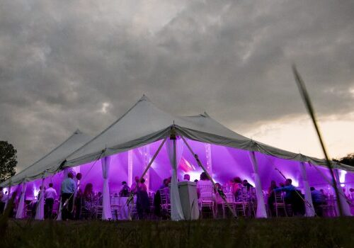 Looking in on guests having fun under a white pole tent with purple lighting