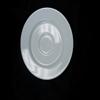White salad plate